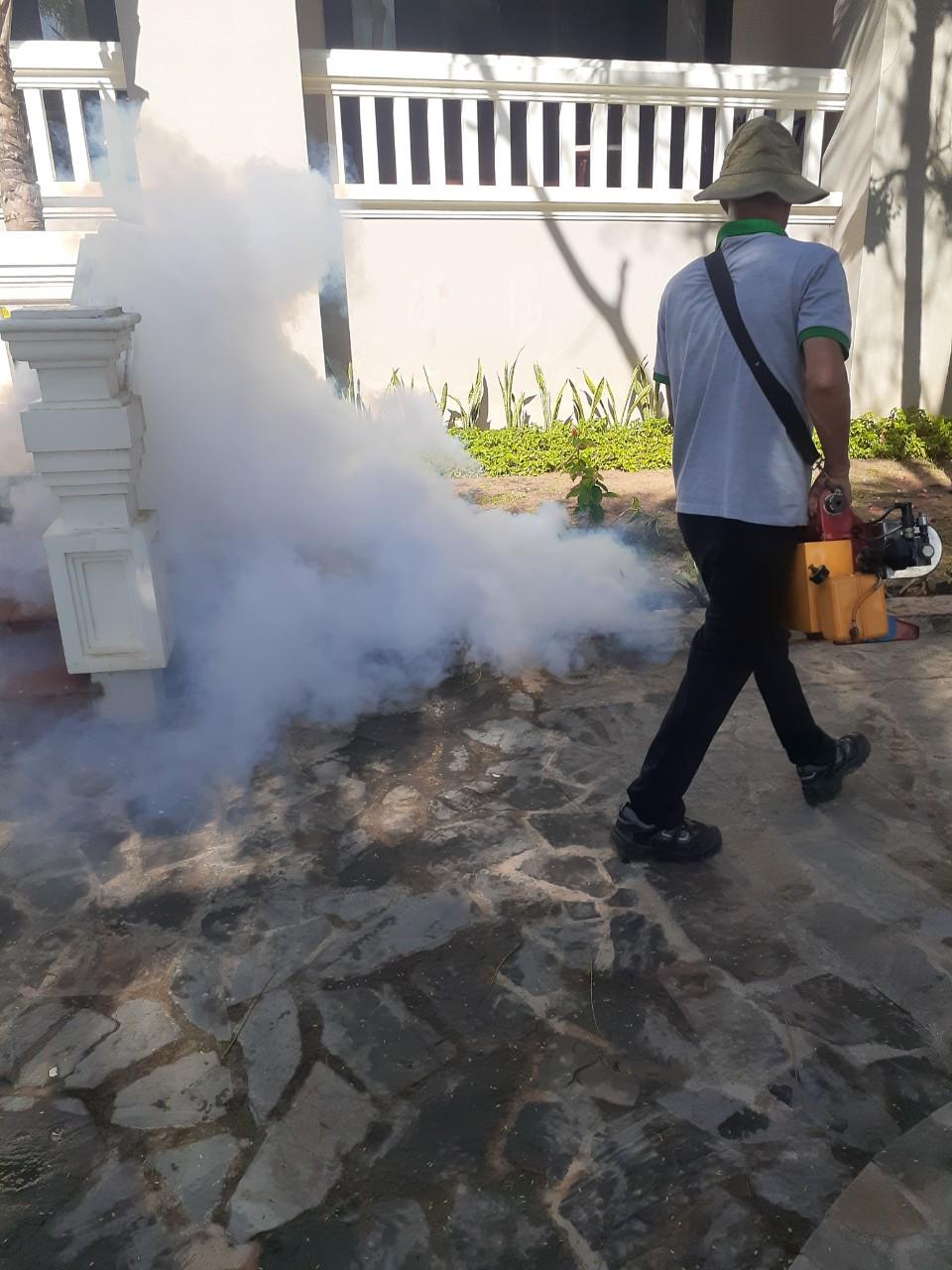 Tiêu diệt côn trùng xung quanh khu vực khách sạn