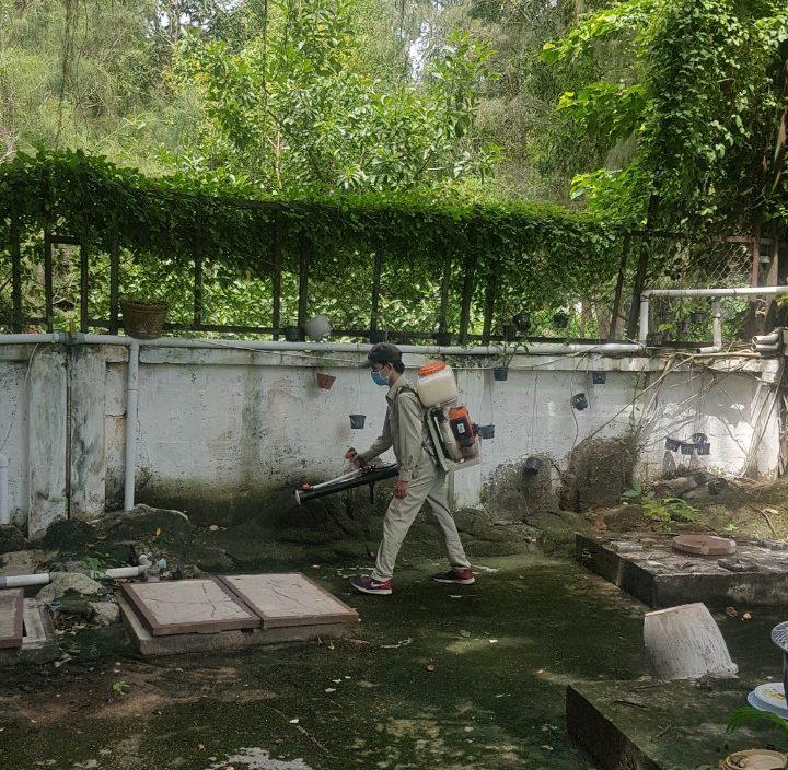 Dịch vụ diệt côn trùng cho khu nghỉ dưỡng chất lượng