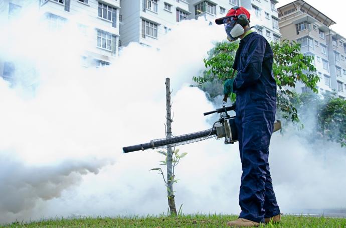 Lý do cần phải tiêu diệt côn trùng văn phòng, tòa nhà, trung tâm thương mại